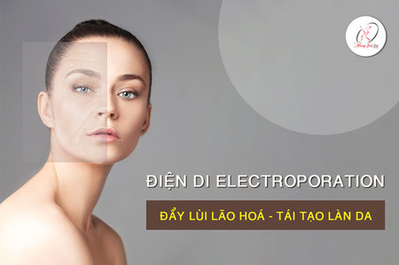 dien-di-electroporation